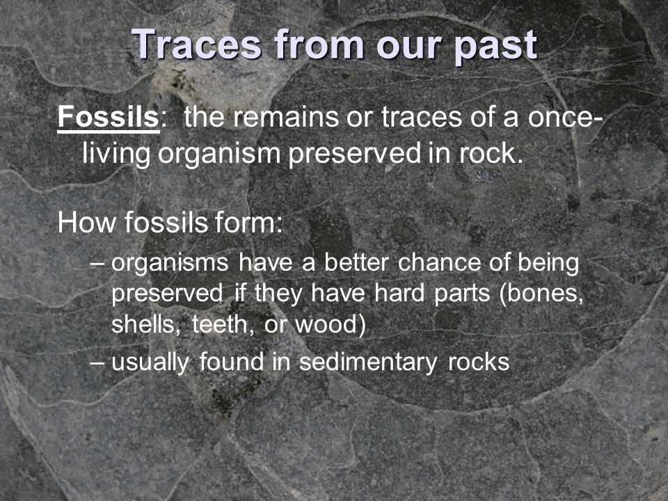 Traces from our past Fossils: the remains or traces of a once- living organism preserved in rock. How fossils form: –organisms have a better chance of