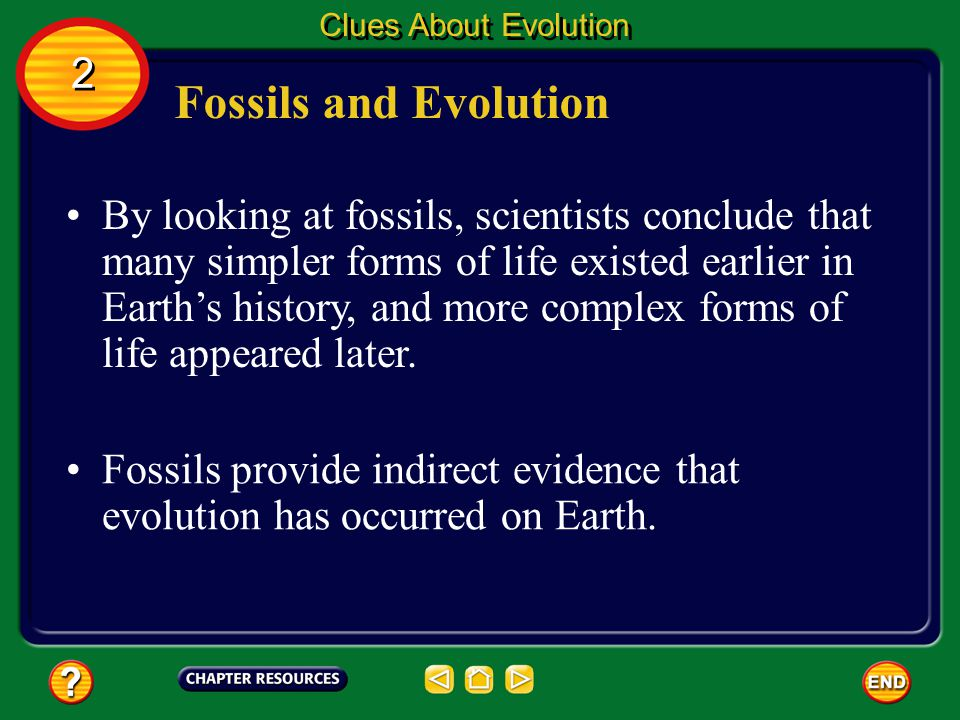 Fossils and Evolution Fossils provide a record of organisms that lived in the past. However, the fossil record is incomplete, or has gaps, much like a