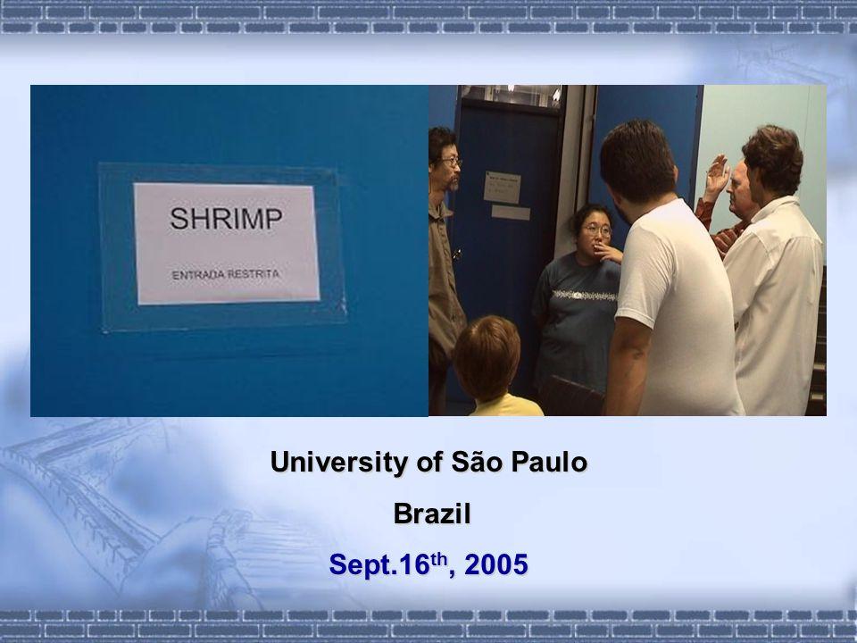 University of São Paulo Brazil Brazil Sept.16 th, 2005