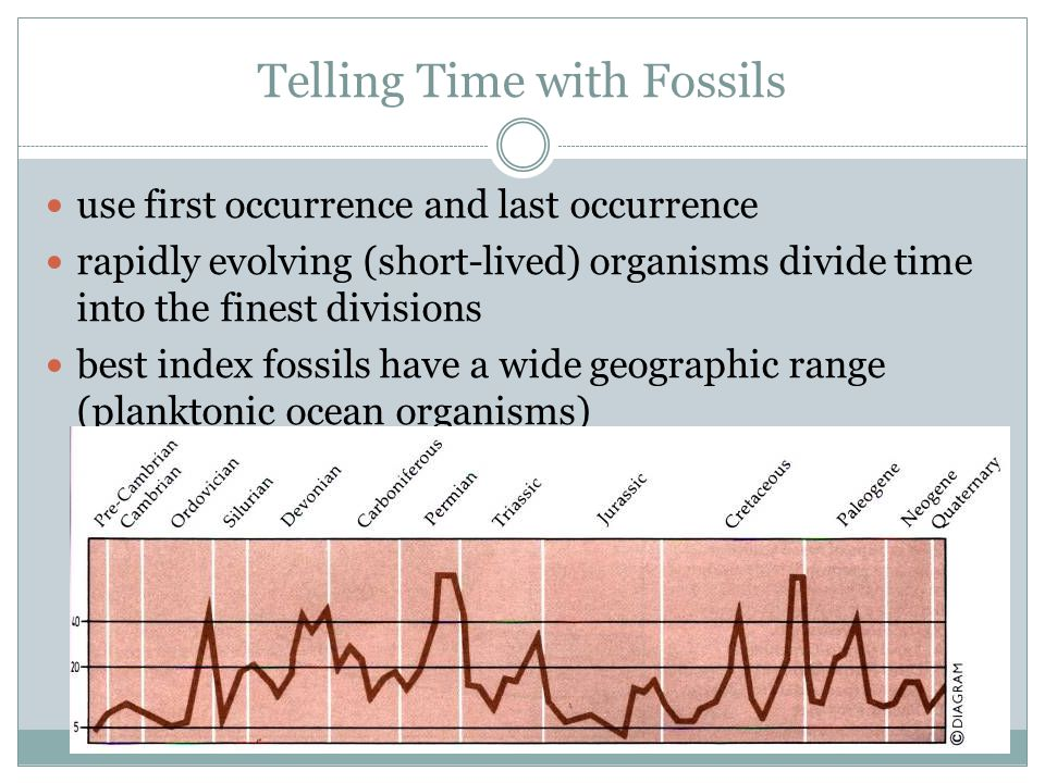 Telling Time with Fossils use first occurrence and last occurrence rapidly evolving (short-lived) organisms divide time into the finest divisions best