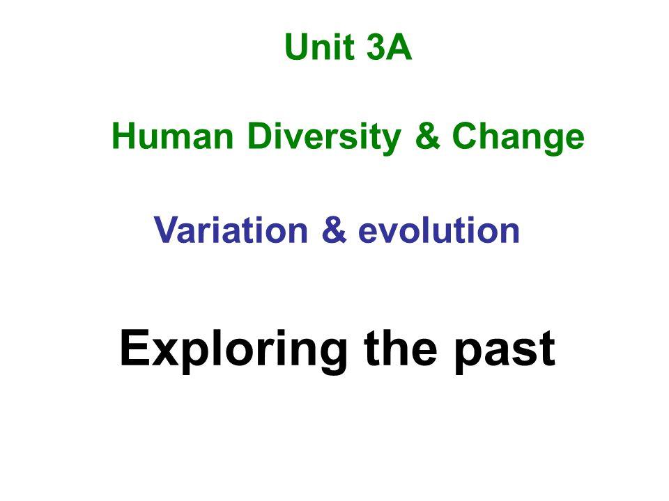 Unit 3A Human Diversity & Change Variation & evolution Exploring the past