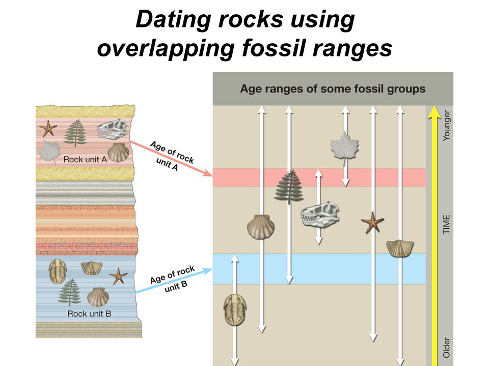 © 2011 Pearson Education, Inc. Dating rocks using overlapping fossil ranges