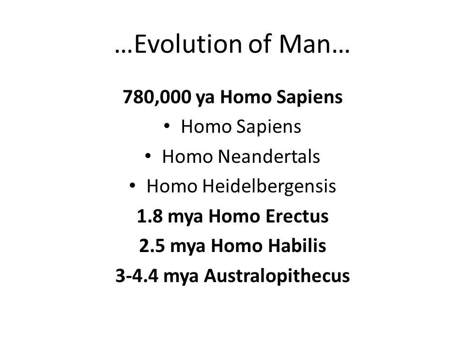 …Evolution of Man… 780,000 ya Homo Sapiens Homo Sapiens Homo Neandertals Homo Heidelbergensis 1.8 mya Homo Erectus 2.5 mya Homo Habilis 3-4.4 mya Aust