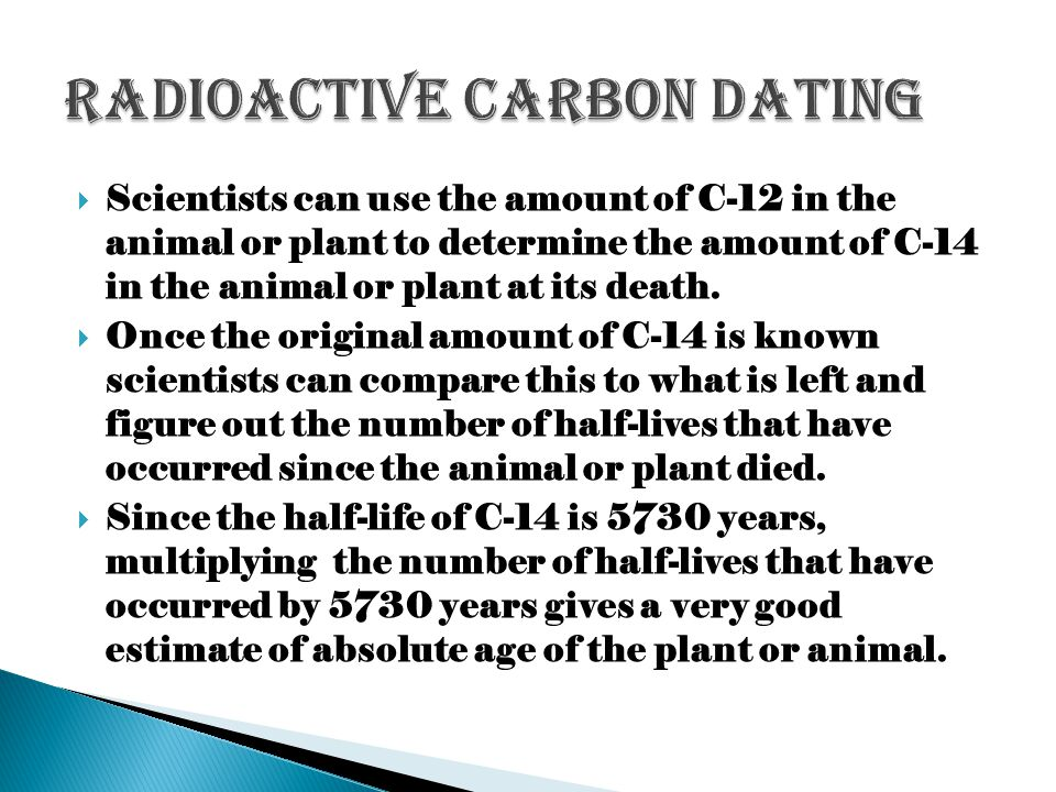 Scientists can use the amount of C-12 in the animal or plant to determine the amount of C-14 in the animal or plant at its death. Once the original am
