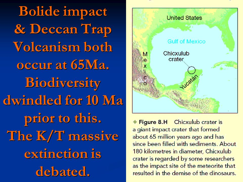 Bolide impact & Deccan Trap Volcanism both occur at 65Ma.