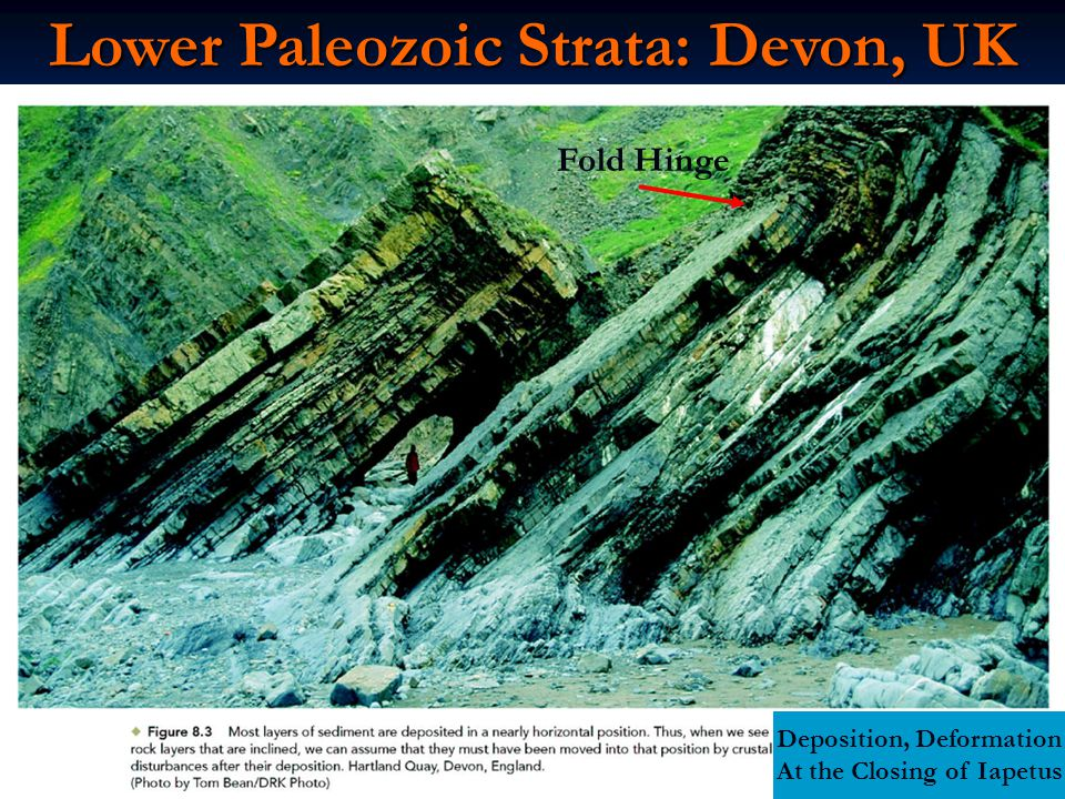 Lower Paleozoic Strata: Devon, UK Deposition, Deformation At the Closing of Iapetus Fold Hinge
