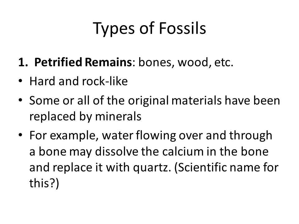 Types of Fossils 1. Petrified Remains: bones, wood, etc. Hard and rock-like Some or all of the original materials have been replaced by minerals For e