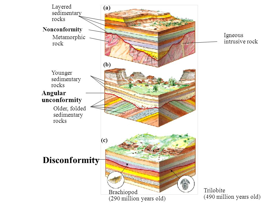 8_9 (a) (b) (c) Layered sedimentary rocks Nonconformity Metamorphic rock Igneous intrusive rock Younger sedimentary rocks Angular unconformity Older,