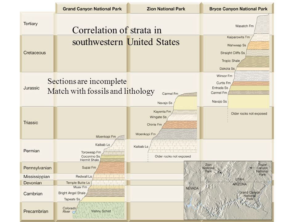 Correlation of strata in southwestern United States Sections are incomplete Match with fossils and lithology