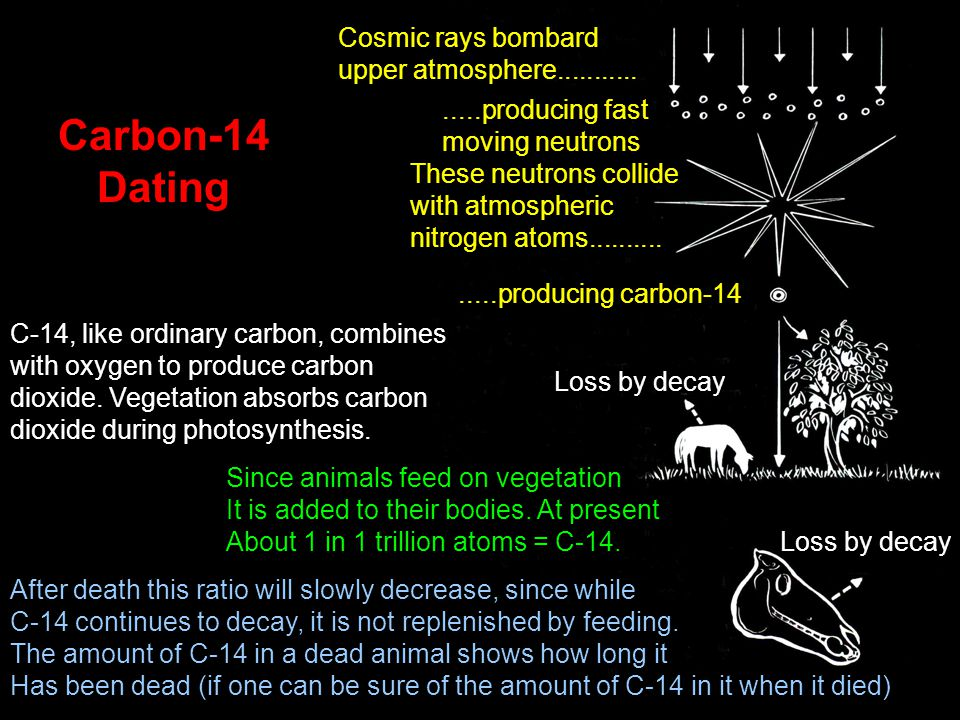 Carbon-14 Dating Cosmic rays bombard upper atmosphere................producing fast moving neutrons These neutrons collide with atmospheric nitrogen atoms...............producing carbon-14 C-14, like ordinary carbon, combines with oxygen to produce carbon dioxide.