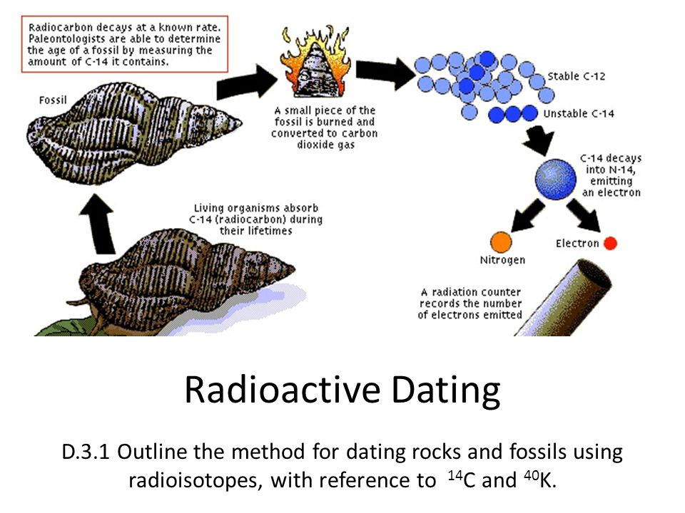 Is Radiocarbon Dating Used To Survey The Age Of Fossils