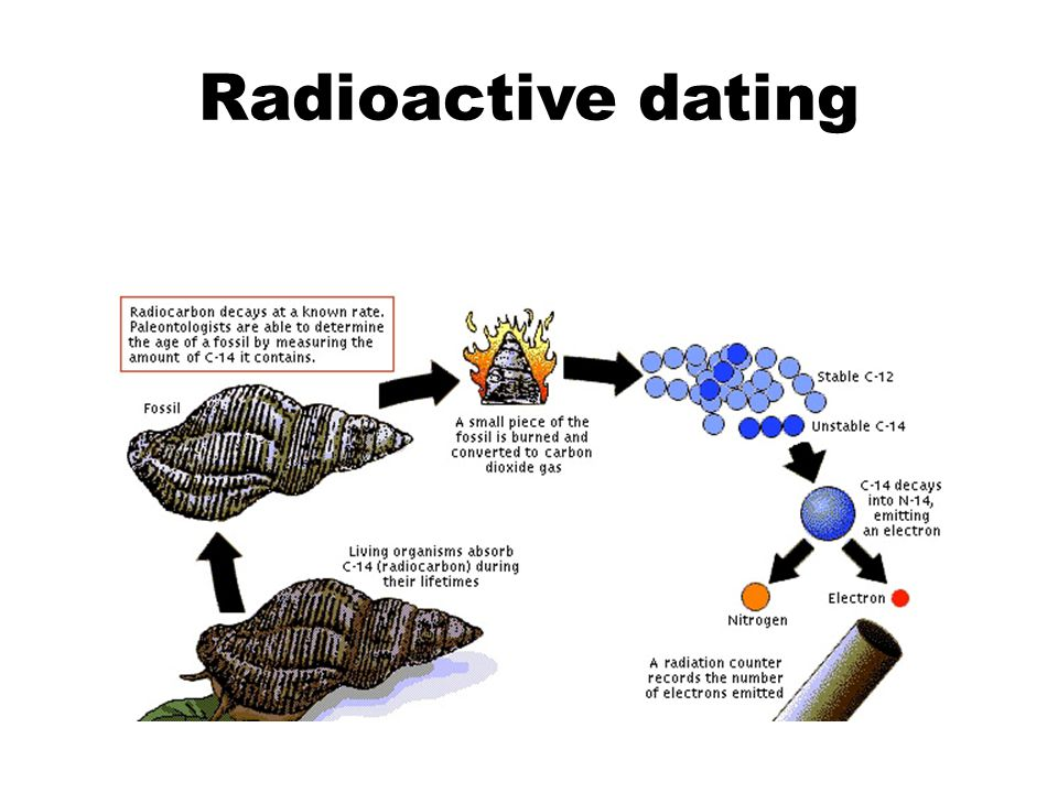 III.Radioactive Dating A. Used to find ABSOLUTE age in years.