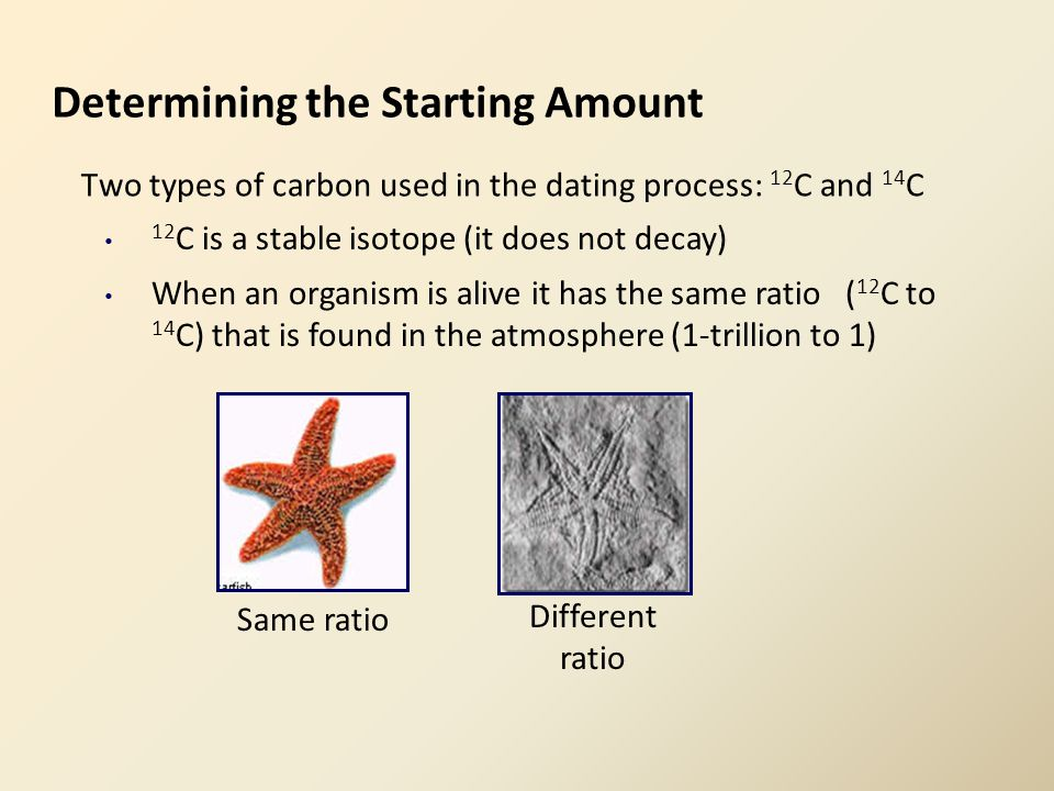 Determining the Starting Amount Two types of carbon used in the dating process: 12 C and 14 C 12 C is a stable isotope (it does not decay) When an organism is alive it has the same ratio ( 12 C to 14 C) that is found in the atmosphere (1-trillion to 1) Same ratio Different ratio