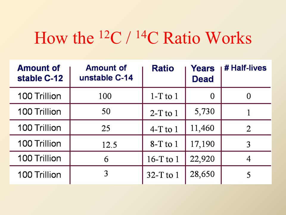 How the 12 C / 14 C Ratio Works