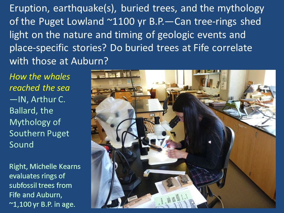 Eruption, earthquake(s), buried trees, and the mythology of the Puget Lowland ~1100 yr B.P.Can tree-rings shed light on the nature and timing of geologic events and place-specific stories.