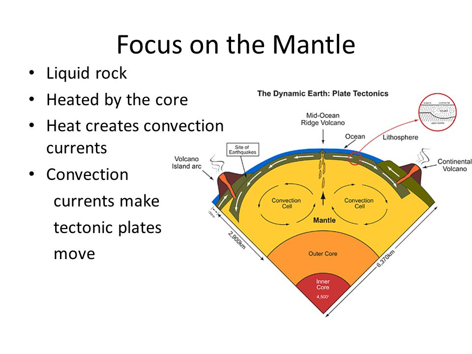 Focus on the Mantle Liquid rock Heated by the core Heat creates convection currents Convection currents make tectonic plates move