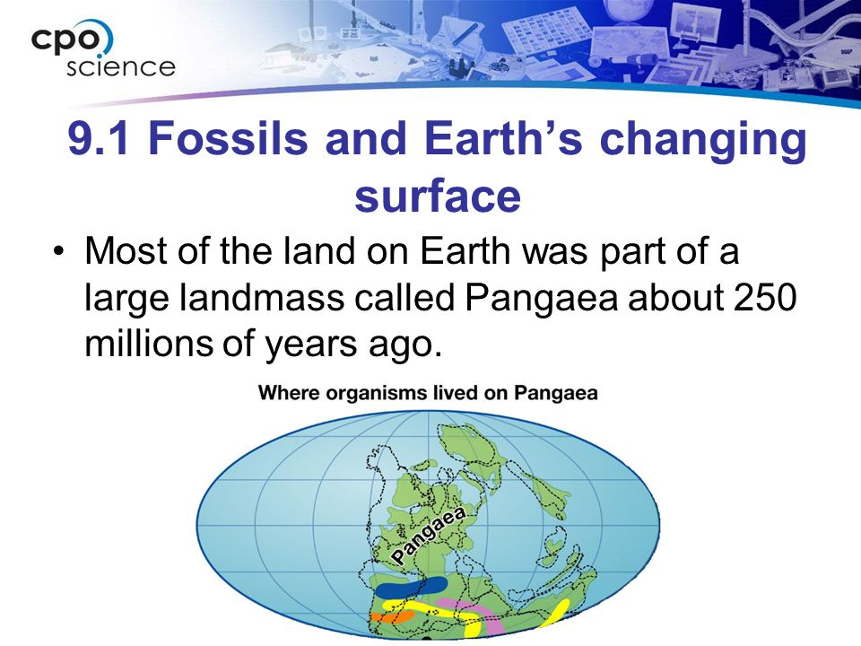 9.1 Fossils and Earths changing surface Most of the land on Earth was part of a large landmass called Pangaea about 250 millions of years ago.