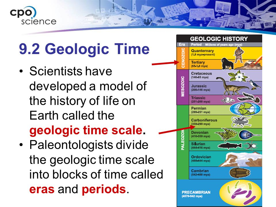9.2 Geologic Time Scientists have developed a model of the history of life on Earth called the geologic time scale. Paleontologists divide the geologi
