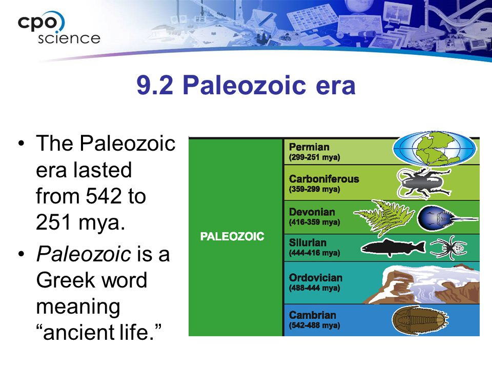 9.2 Paleozoic era The Paleozoic era lasted from 542 to 251 mya. Paleozoic is a Greek word meaning ancient life.
