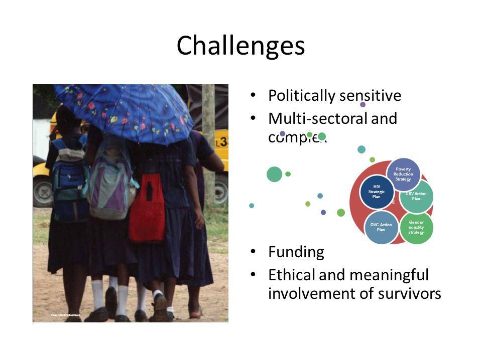 Challenges Politically sensitive Multi-sectoral and complex Funding Ethical and meaningful involvement of survivors VAC Gender equality strategy GBV Action Plan OVC Action Plan Poverty Reduction Strategy HIV Strategic Plan