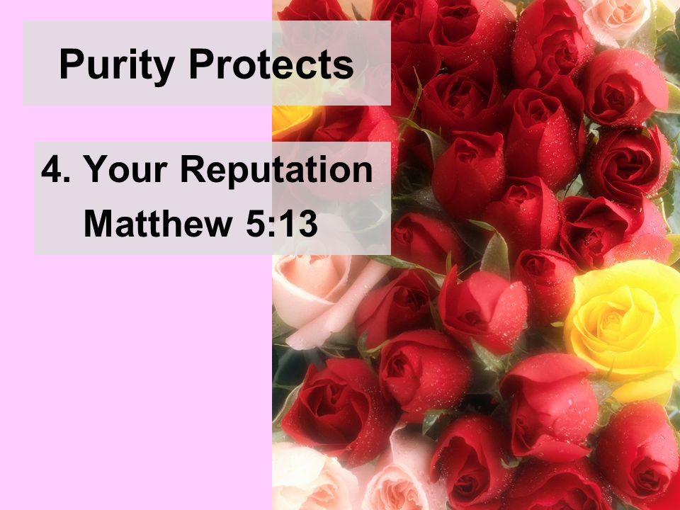 Purity Protects 4. Your Reputation Matthew 5:13