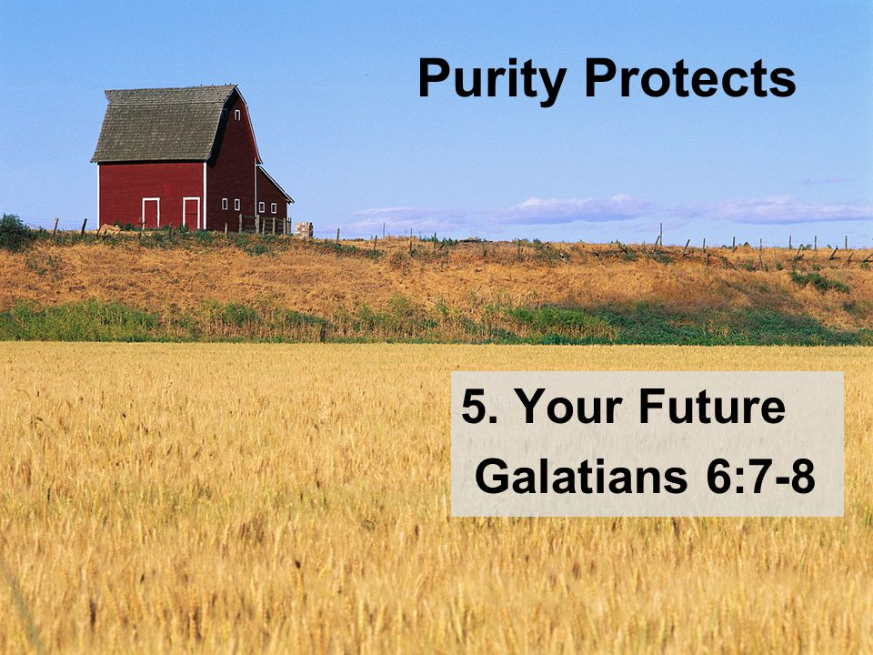 Purity Protects 5. Your Future Galatians 6:7-8
