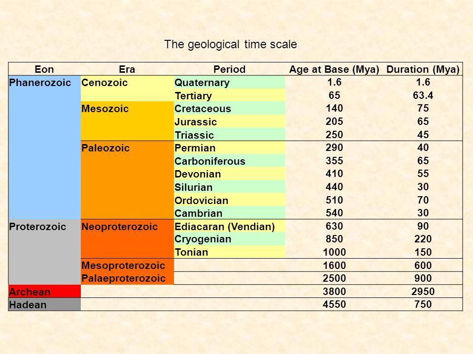 The geological time scale EonEraPeriodAge at Base (Mya)Duration (Mya) PhanerozoicCenozoicQuaternary 1.6 Tertiary 6563.4 MesozoicCretaceous 14075 Jurassic 20565 Triassic 25045 PaleozoicPermian 29040 Carboniferous 35565 Devonian 41055 Silurian 44030 Ordovician 51070 Cambrian 54030 ProterozoicNeoproterozoicEdiacaran (Vendian) 63090 Cryogenian850220 Tonian1000150 Mesoproterozoic 1600600 Palaeproterozoic 2500900 Archean 38002950 Hadean 4550750