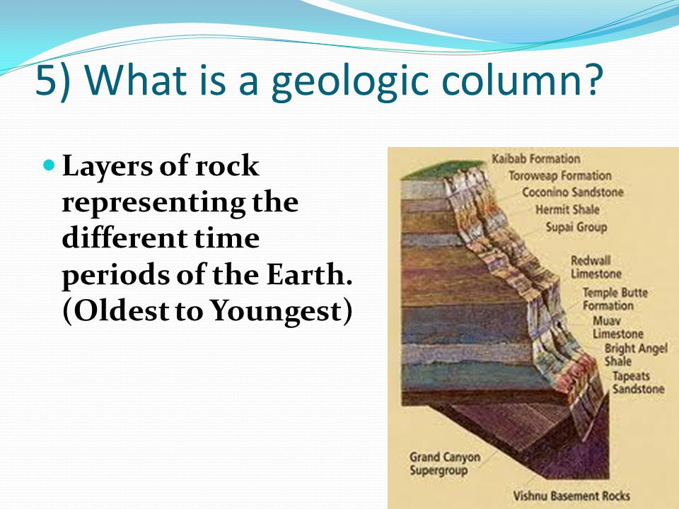 5) What is a geologic column? Layers of rock representing the different time periods of the Earth. (Oldest to Youngest)