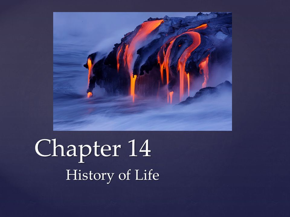 { Chapter 14 History of Life