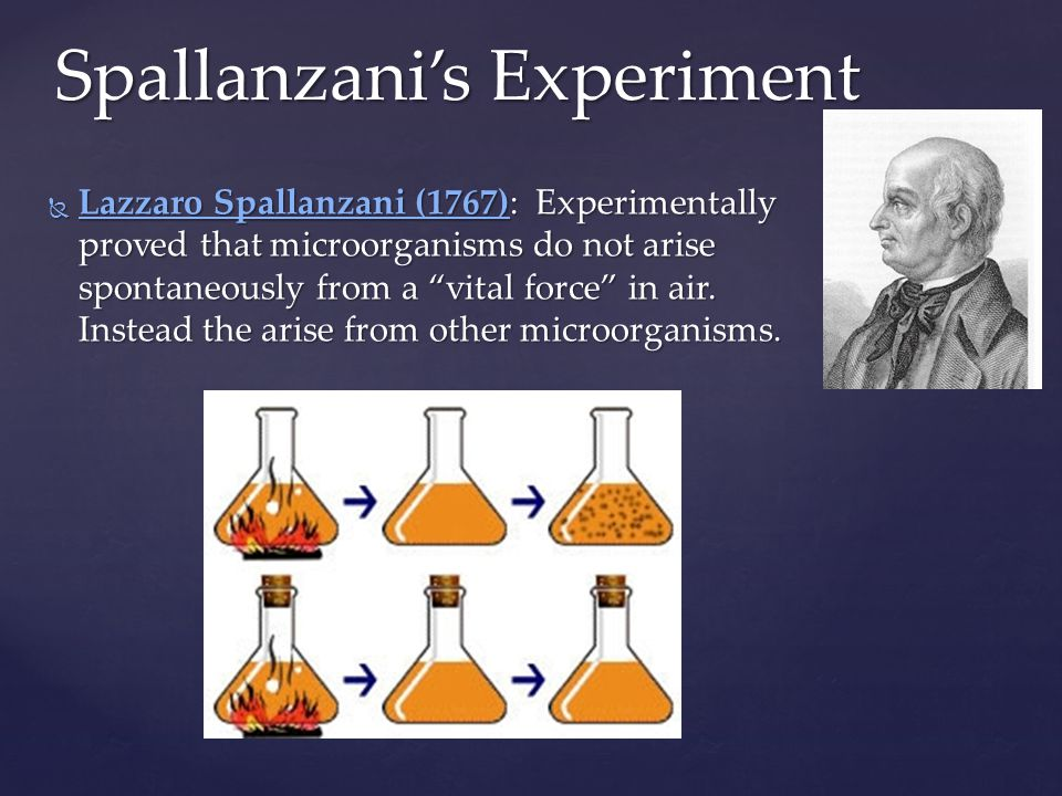 Louis Pasteur (1864): Experimentally proved (without doubt) that broth does not spontaneously turn into microorganisms by using an S-shaped flask.