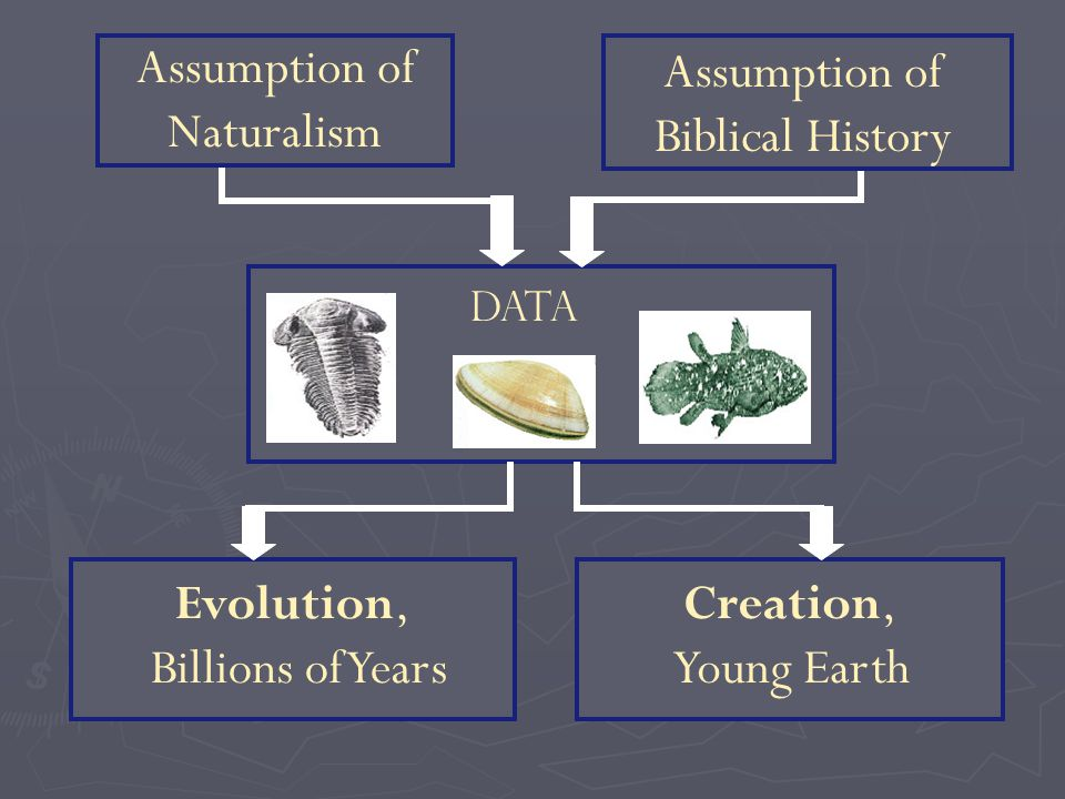 Data Creation, Young Earth Evolution, Billions of Years Assumption of Biblical History Assumption of Naturalism