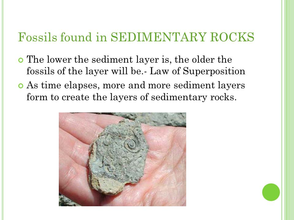 Fossils found in SEDIMENTARY ROCKS The lower the sediment layer is, the older the fossils of the layer will be.- Law of Superposition As time elapses,