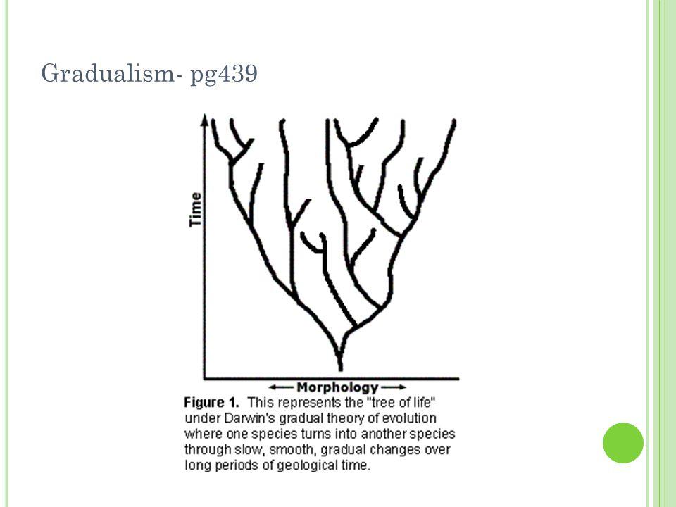 Gradualism- pg439