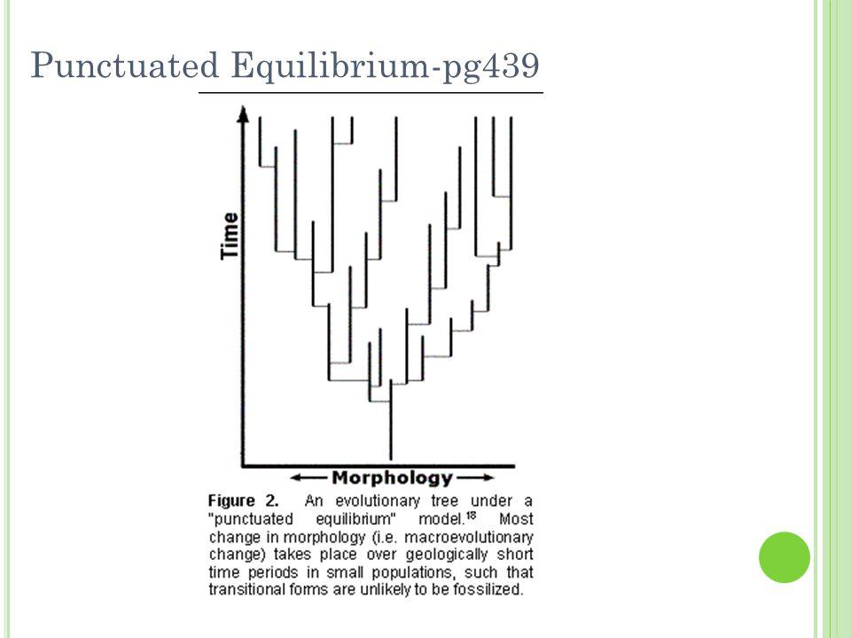 Punctuated Equilibrium-pg439