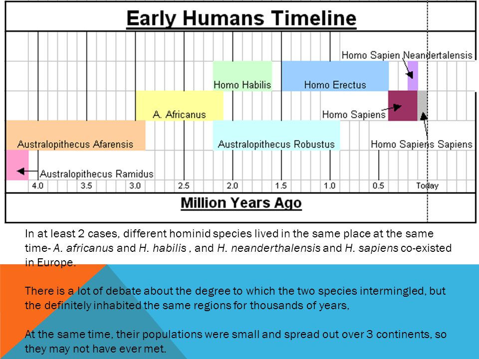 In at least 2 cases, different hominid species lived in the same place at the same time- A.