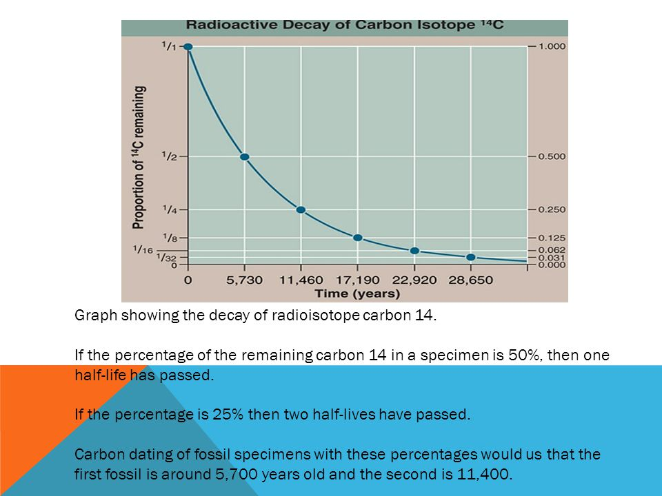 Graph showing the decay of radioisotope carbon 14.