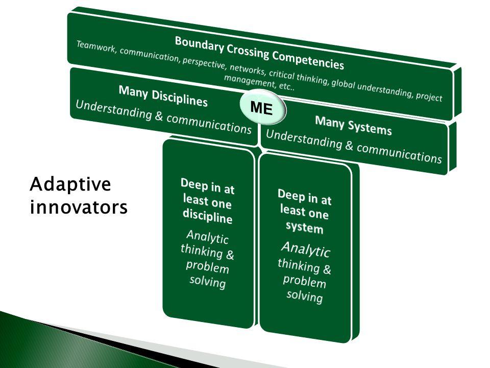 Adaptive innovators
