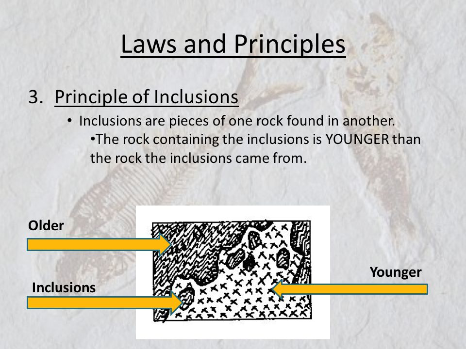 Laws and Principles 3.Principle of Inclusions Inclusions are pieces of one rock found in another. The rock containing the inclusions is YOUNGER than t