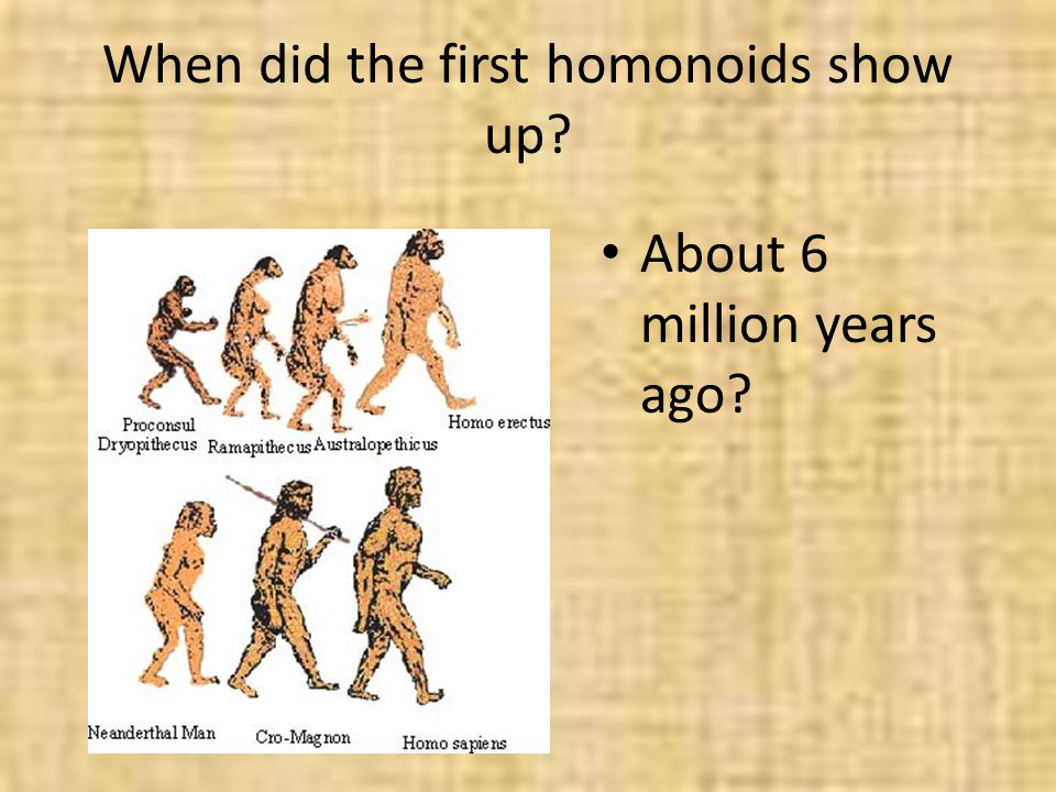 When did the first homonoids show up? About 6 million years ago?