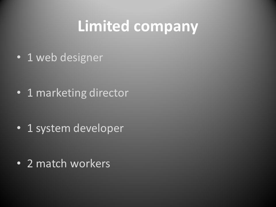 Limited company 1 web designer 1 marketing director 1 system developer 2 match workers