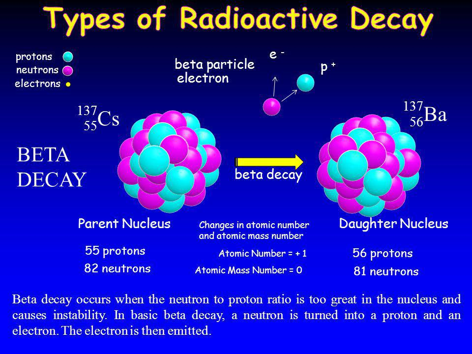 alpha particle Parent Nucleus Daughter Nucleus alpha decay Changes in atomic number and atomic mass number Atomic Number = - 2 Atomic Mass Number = - 4 4H4H 2 ALPHA DECAY 238 U 92 234 Th 90 92 protons 146 neutrons 90 protons 144 neutrons protons neutrons electrons Alpha decay occurs when the nucleus has too many protons which cause excessive repulsion.