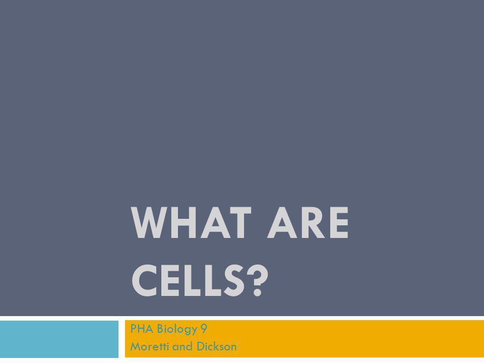 WHAT ARE CELLS? PHA Biology 9 Moretti and Dickson