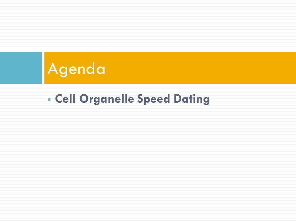 Cell Organelle Speed Dating Agenda