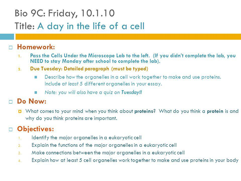 Bio 9C: Friday, 10.1.10 Title: A day in the life of a cell Homework: 1.