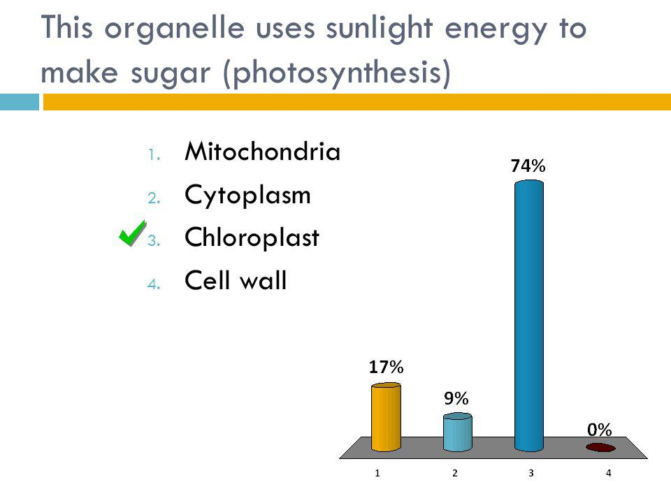 This organelle uses sunlight energy to make sugar (photosynthesis) 1.
