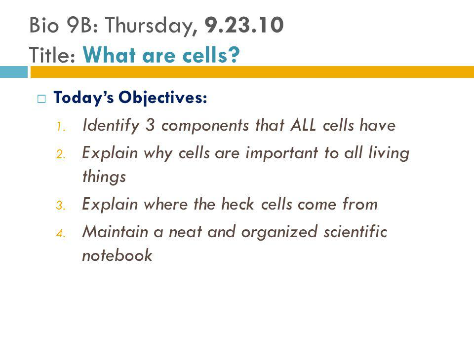 Todays Objectives: 1.Identify 3 components that ALL cells have 2.