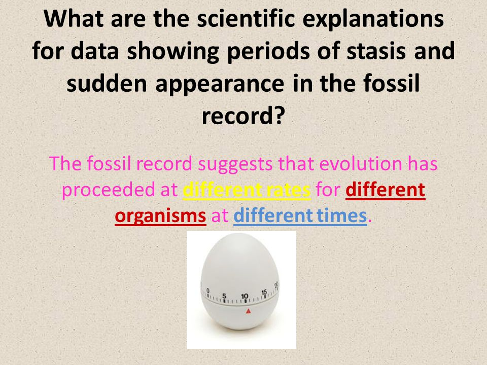 What are the scientific explanations for data showing periods of stasis and sudden appearance in the fossil record.