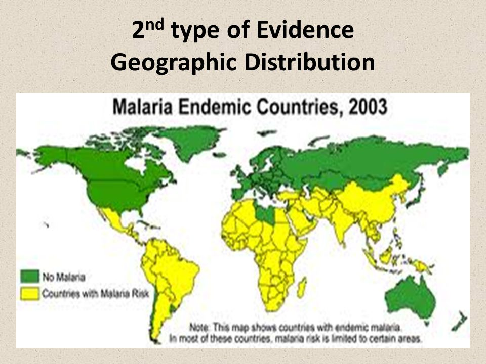 2 nd type of Evidence Geographic Distribution
