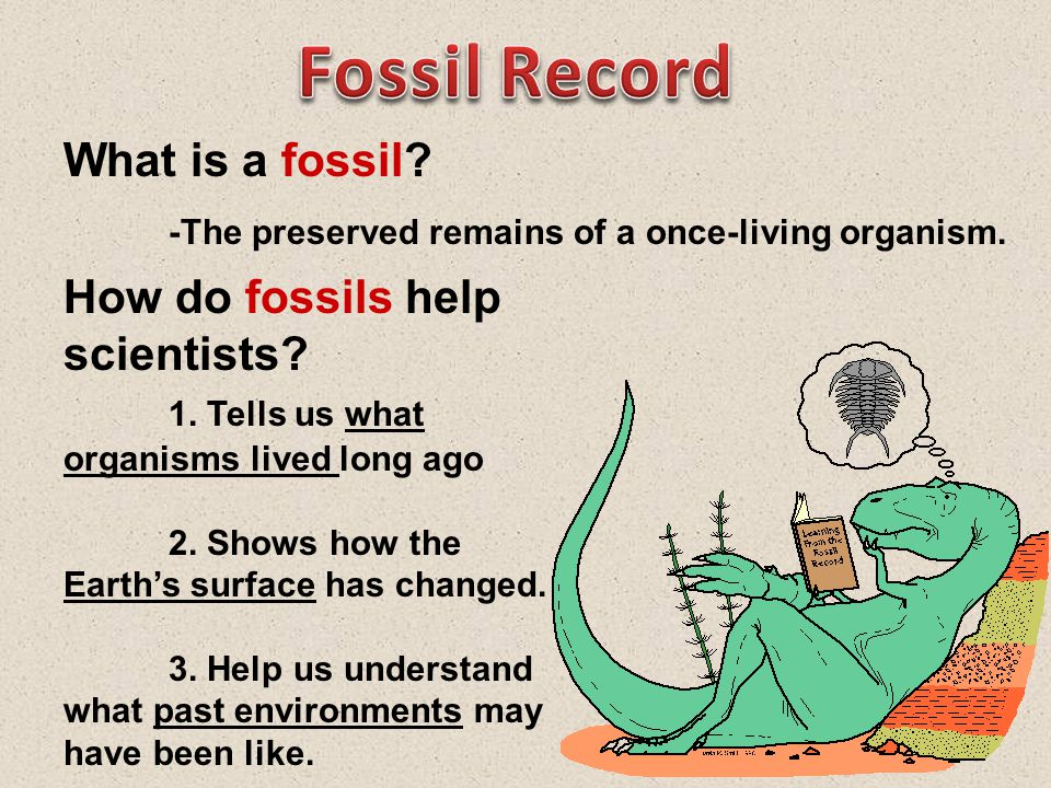 What is a fossil.-The preserved remains of a once-living organism.
