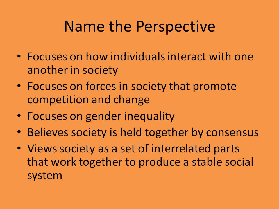 Name the Perspective Focuses on how individuals interact with one another in society Focuses on forces in society that promote competition and change